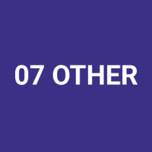 07-other